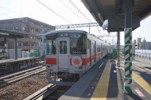 DSC02075 (3)